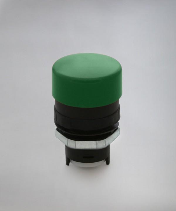 EF3/30 - Zelena