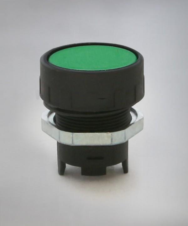 ER3 - Zelena