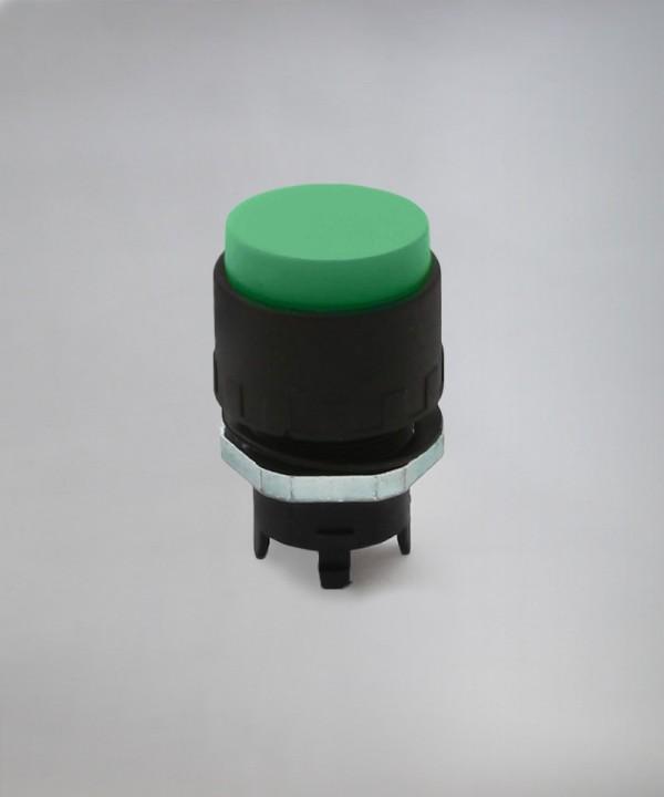 ER - PP3 - Zelena