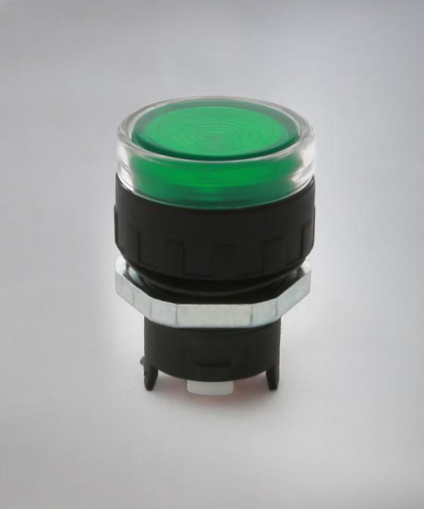 ERL3 - Zelena